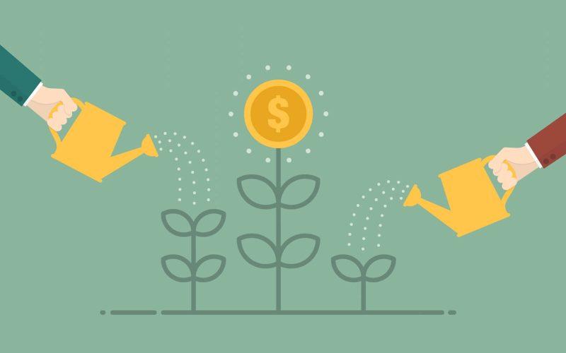 Pengar växer på ett träd